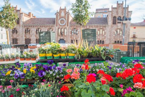 Mercado Teruel